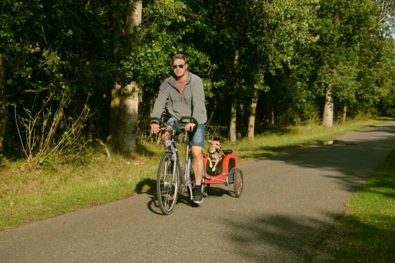 Mann Fahrrad Hund Anhänger