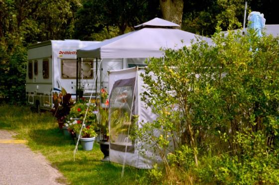 Wohwnagen Blumen Campingplatz