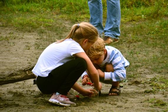 Kinder suchen Insekten