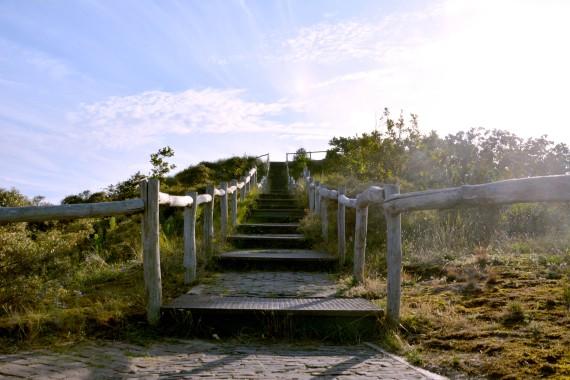 Treppe Dünen Kennemerland