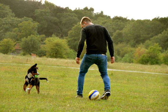Welpe spielen Ball Junge