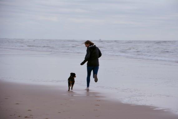 Hund Mädchen Strand