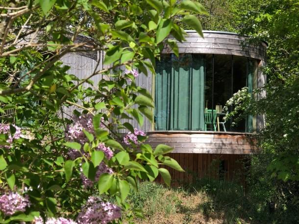 Boomhuis omgeving 1.jpg