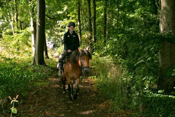 Waldritt Pferd Mädchen Geversduin