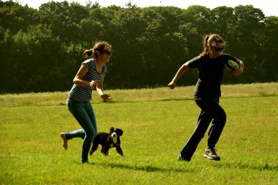 rennen Frauen Hund Ball